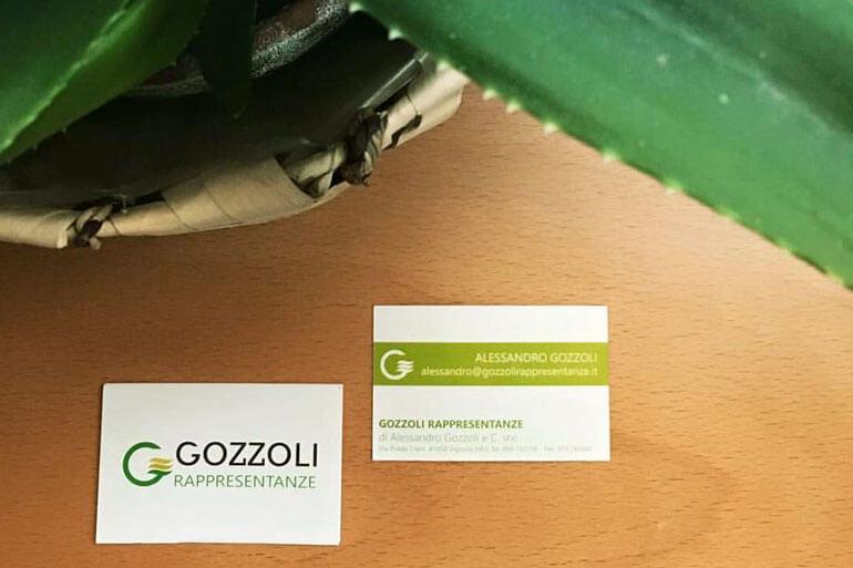 Porfolio-Gozzoli-Rappresentanze-homepage